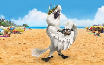 beach, cartoon, parrot, rio, monkey