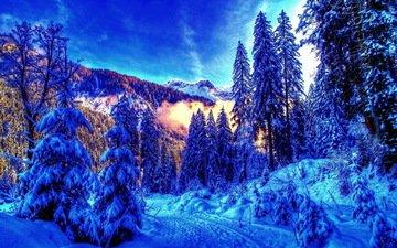 небо, горы, снег, лес, зима, утро, мороз, сугробы, зимний лес