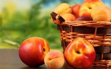 фрукты, корзина, плоды, персики, абрикосы, нектарин