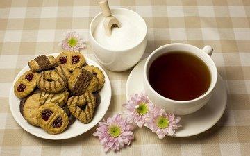 цветы, блюдце, чашка, чай, сахар, печенье