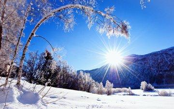 деревья, горы, солнце, снег, природа, зима, мороз, иней, зимний лес
