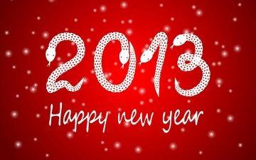 новый год, 2013