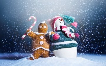 снег, новый год, макро, снеговик, игрушки, праздник, печенька, с новым годом, 2013, сувениры, пряник