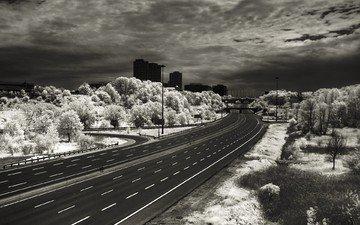 дорога, разметка, шоссе