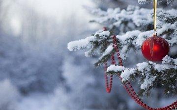 снег, новый год, лес, зима, мороз, зимний лес, новогодняя игрушка, на живой, елке