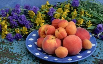 цветы, фрукты, персики, тарелка, абрикосы, букет цветок