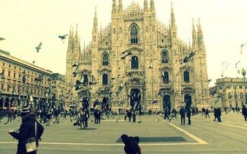 собор, люди, италия, площадь, голуби, милан