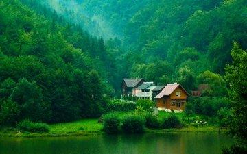 деревья, река, зелень, лес, кусты, домики