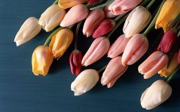 cvety, tyulpany, butony, buket, poverxnos, разнцветные