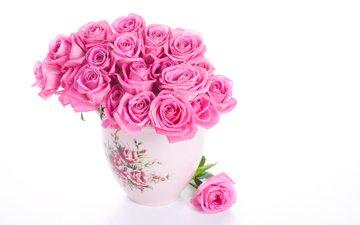 rozovye, rozy, vaza, belyj fon
