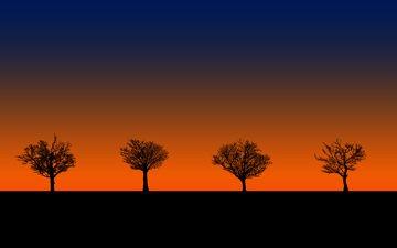 деревья, закат, силуэты