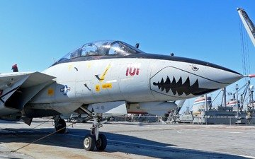 the plane, avia, f 14 tomcat