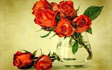 cvety, listya, rozy, voda, buket, krasnye, rastenie, vaza