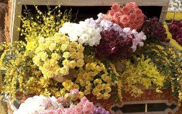 цветы, розы, cvety, rozy, prilavok, прилавок, букеты