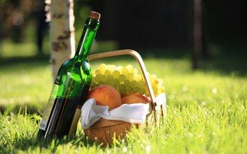 трава, виноград, корзина, вино, персики, бутылка, салфетка, береза, красное, пикник