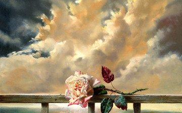 cvetok, roza, svezhest, zhivopis, обьлака