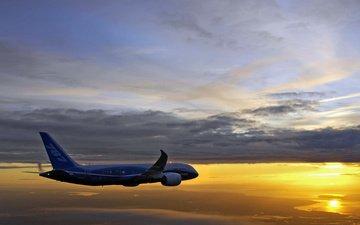 flight, boeing 787 8 drimeliner