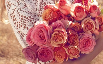cvety, rozy, buket, krasnye