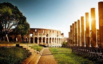 солнце, дерево, закат, италия, колонны, колизей, рим