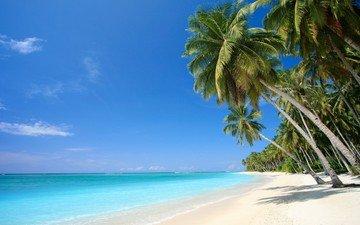 песок, пляж, пальмы, отдых, тропики