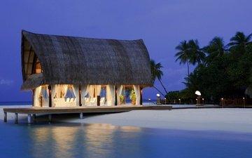 песок, пляж, пальмы, бунгало, тропики, мальдивы
