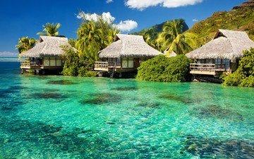 вода, природа, берег, море, пальмы, бунгало, тропики, вилла, гостиница