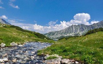 река, горы, природа, пейзаж, scenery, ландшафт, на природе, higland river