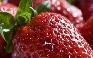 макро, ягода, красная, клубника