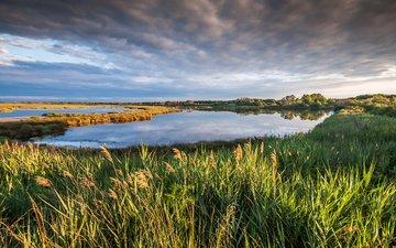 небо, трава, облака, озеро, природа, пейзаж, франция, франци, petite camargue
