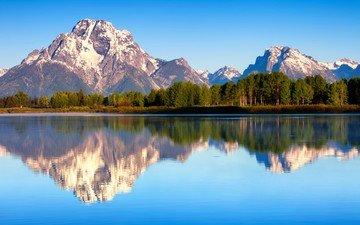 природа, лес, отражения, утро, лето, сша, гора моран, штат вайоминг, гранд-титон национальный парк, озеро джексон