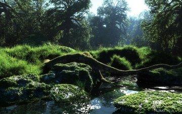 трава, река, природа, камни, лес, ручей, коряга