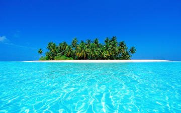 пляж, пейзажи, пальмы, остров, тропики, багамы, мальдивы