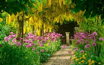 цветы, дорожка, сад, колонна, акация, глициния, античный сад