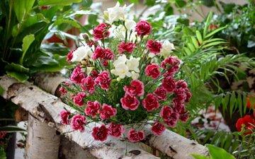 цветы, букет, фрезии, композиция, гвоздики