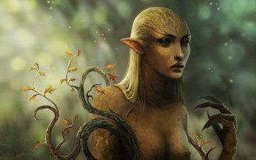 девушка, когти, дриада, нимфа, покровительницы деревьев, стебли, листья