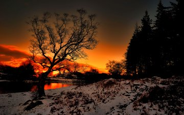 деревья, река, снег, природа, закат, зима, пейзаж, свечение, сумерки