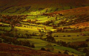 свет, деревья, поля, дома, англия, долина, йоркшир