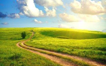 небо, дорога, трава, облака, солнце, пейзаж, поле, лето