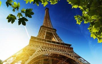 небо, солнце, листья, париж, франция, эйфелева башня, la tour eiffel, франци, эйфелева башня