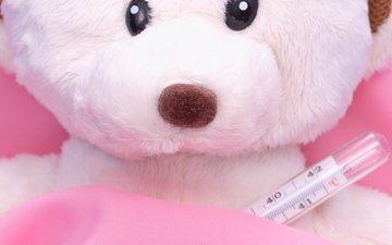 игрушка, тедди, градусник, плюшевый мишка, плюшевый медведь, мягкая игрушка