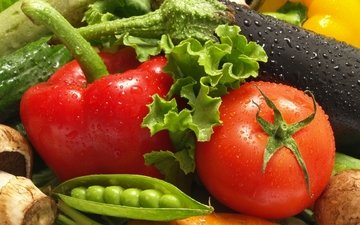 зелень, грибы, овощи, баклажан, горошек, томат, перец, салат, огурец, шампиньоны, кабачок