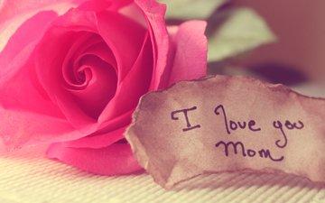 roza, lyubov, mama, slova, zapiska, skatert