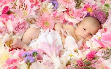 cvety, rozy, lilii, rebenok, malysh, deti, malyshka, gerb