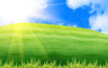 солнце, поле