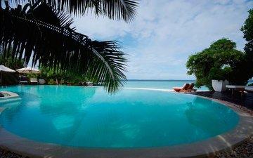 море, бассейн, тропики