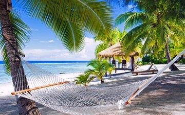 пляж, гамак, тропики, мальдивы