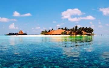 остров, тропики, мальдивы