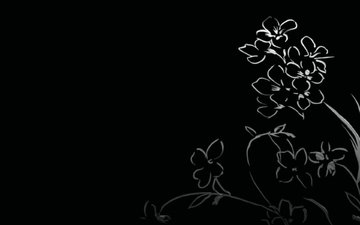 цветочки, рисуночек