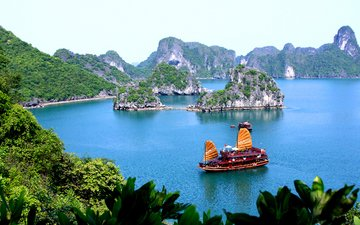 тропики, вьетнам