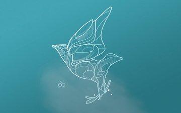 belaya, ptica